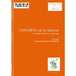 Concerto en la mineur