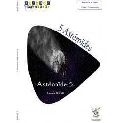 5 Astéroïdes - Astéroïde 5